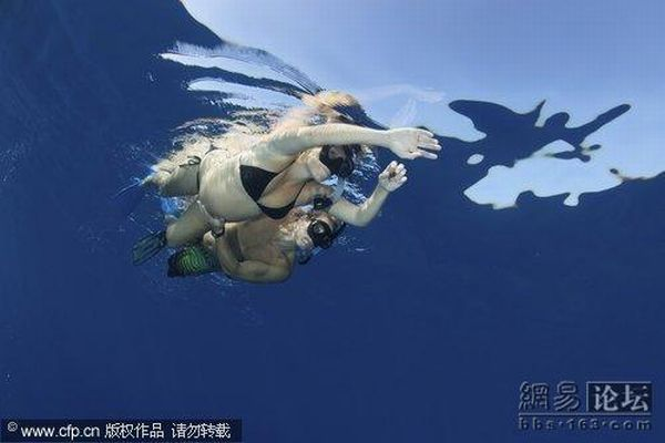 Pregnant Women Swimming with Dolphins (5 pics)