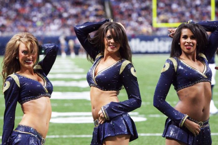 NFL Cheerleaders 2010 (32 pics)