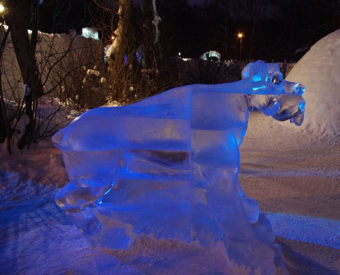 Ice Age in Ice (15 pics)