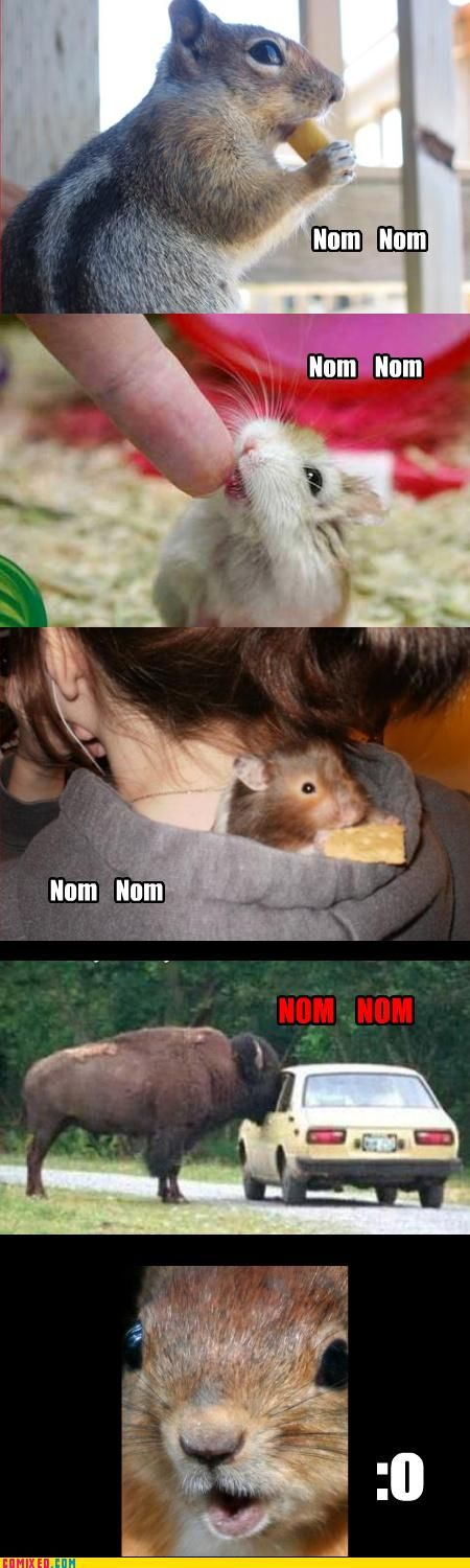 Funny commixed pictures. Part 3 (72 pics)