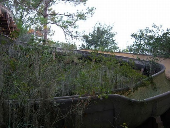 Abandoned water park at Walt Disney World (56 pics)