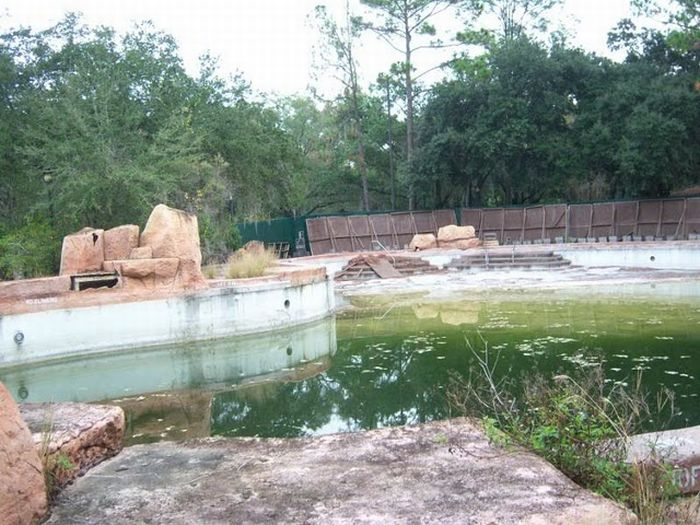 Disney World River Country And Discovery Island