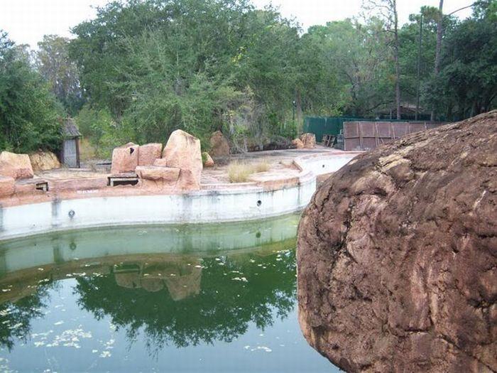 Parque de agua abandonado en Walt Disney World !