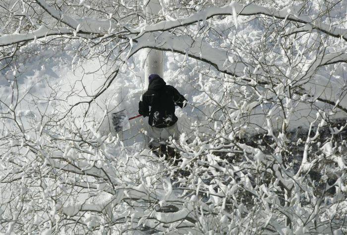 Snowfall in D.C. Area (27 pics)