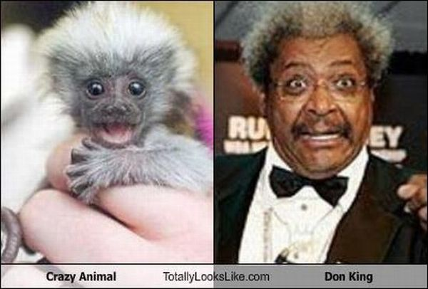 Totally Look Alikes Part II (67 pics)