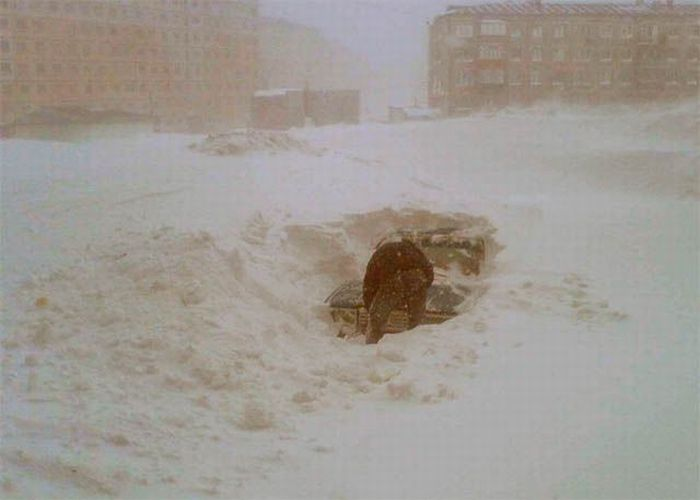 Snowy Winter (46 pics)