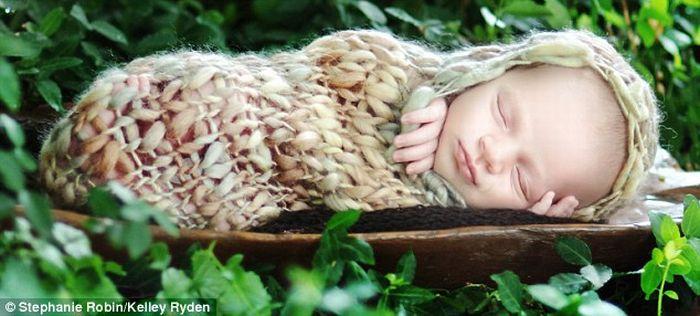 Sleeping Newborns (11 pics)