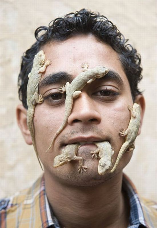 A Man who Loves Lizards (5 pics)