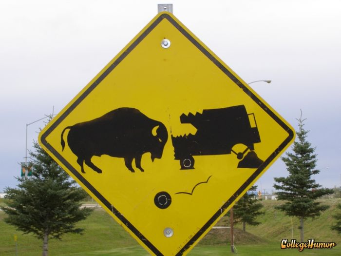 There is never enough of funny and strange warning signs!!!