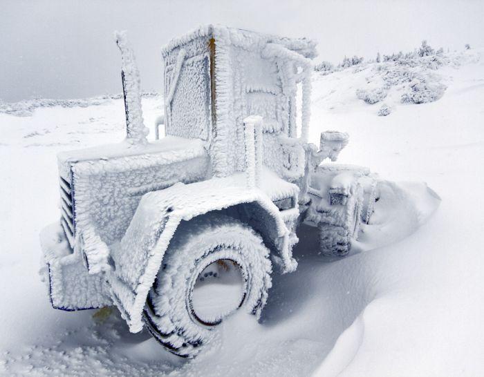 Winter Paradise (24 pics)
