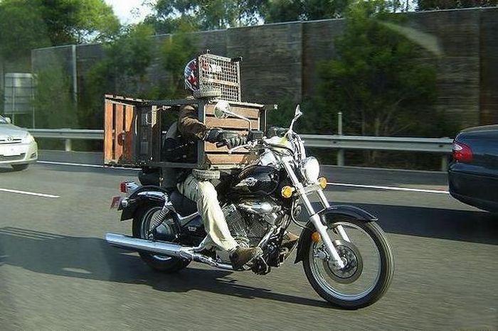 motobike cage