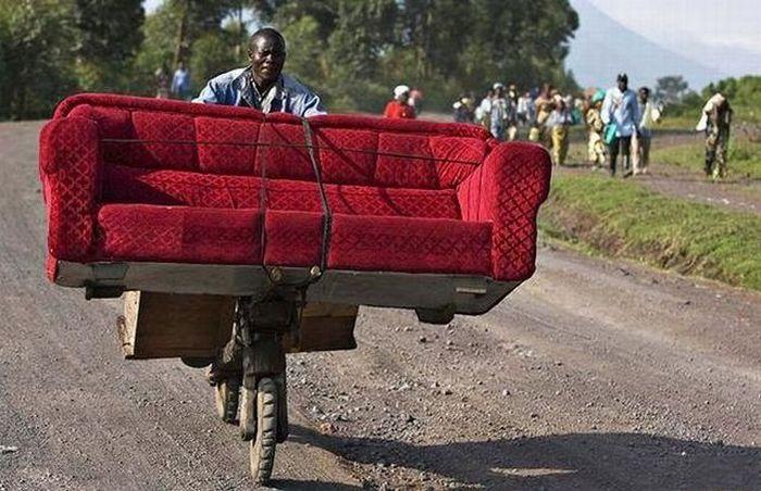 bike sofa