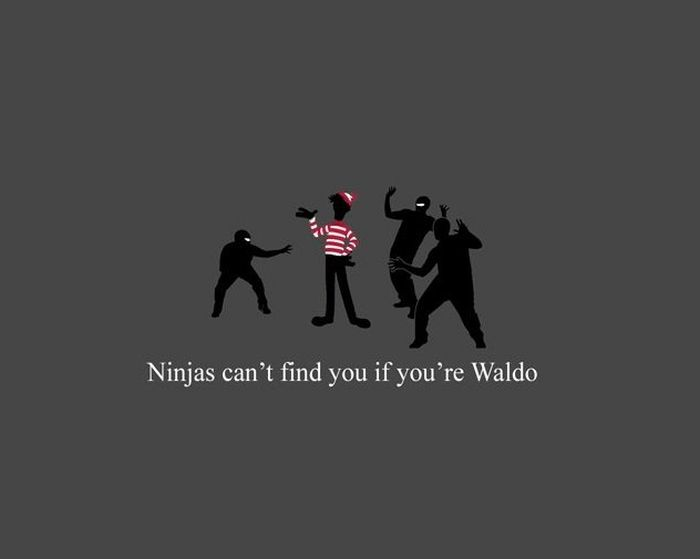 Funny Facts About Ninjas (20 pics)