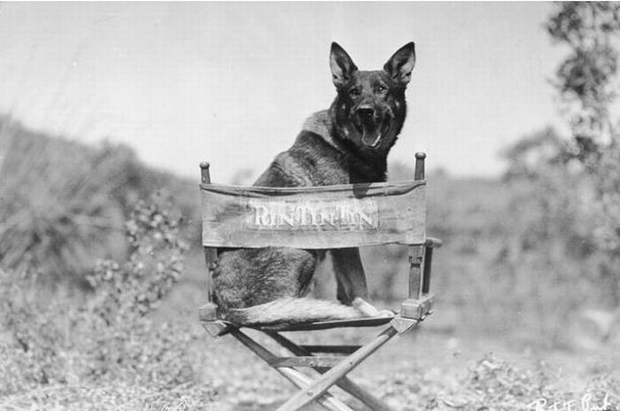 Hollywood. 100 Years Ago (28 pics)
