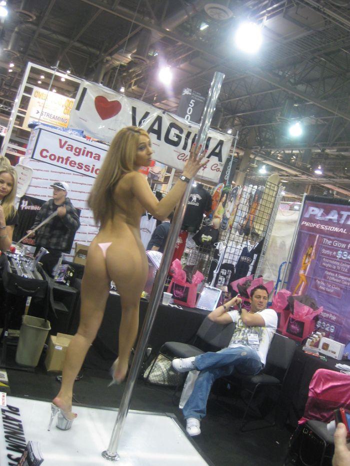 Girls of AVN 2010 (96 pics)