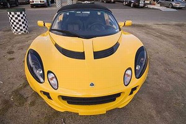 Cars that look like animals (32 pics)