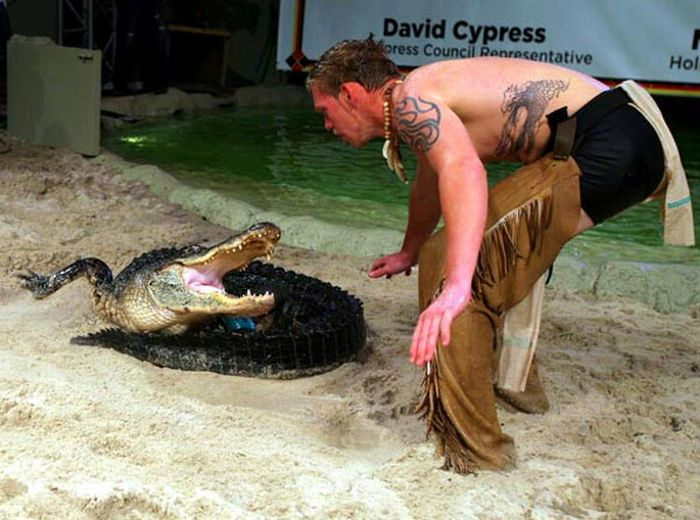 Playing with Crocodiles (15 pics)