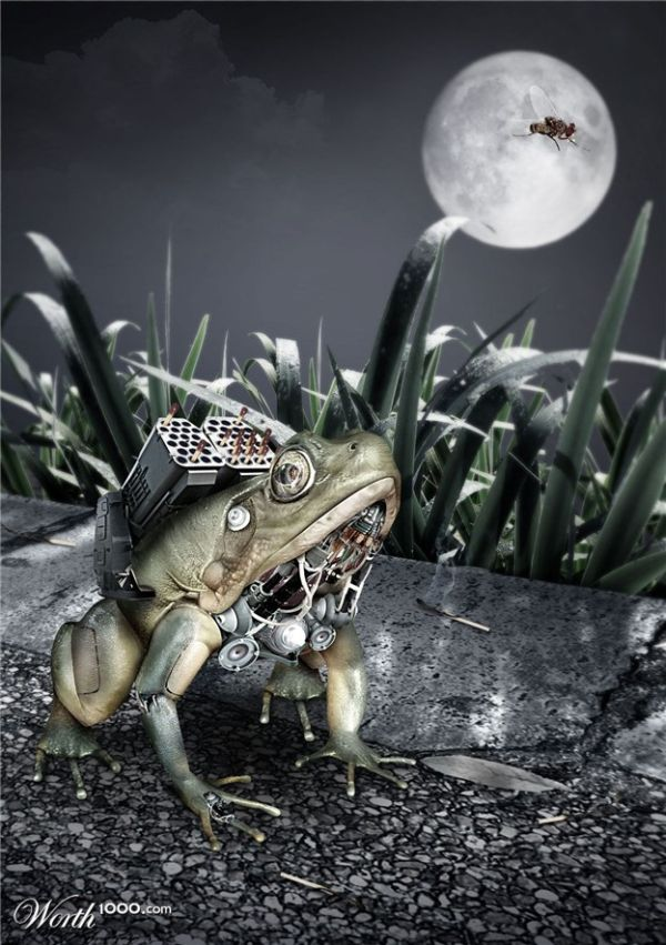 Cyborg Animals from Photoshop Contest (16 pics)