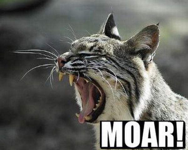 MOAR! (47 pics)