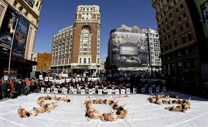 Naked People in Spain Protest Against Corrida (9 pics)