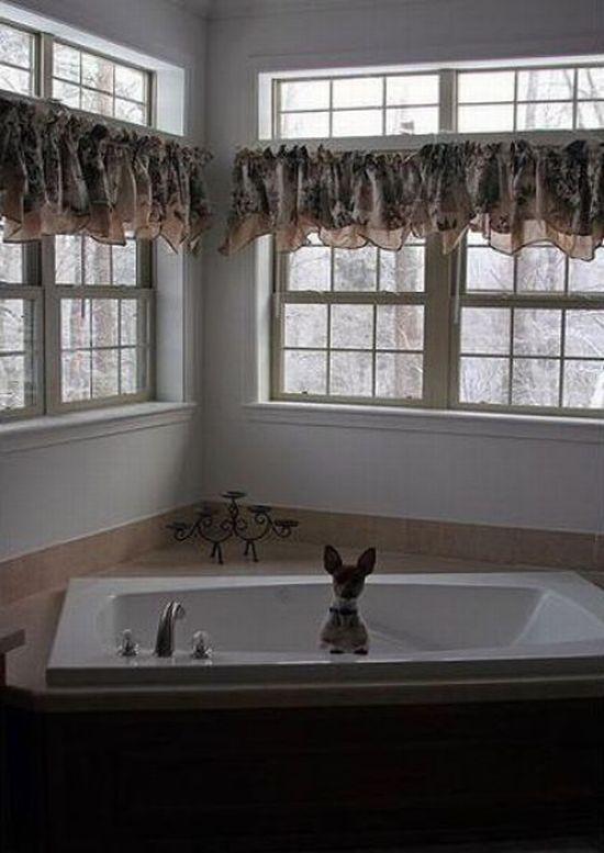 Bathing Dogs (29 pics)