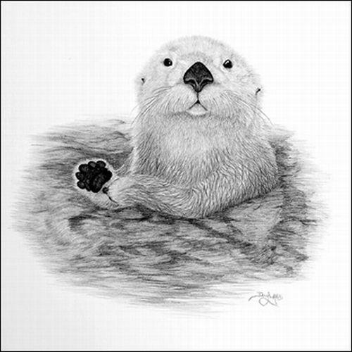 Pencil Drawings by Doug Landis (12 pics)