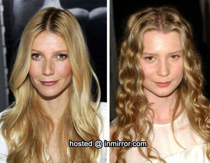 Celebrities who Look Similar (80 pics)