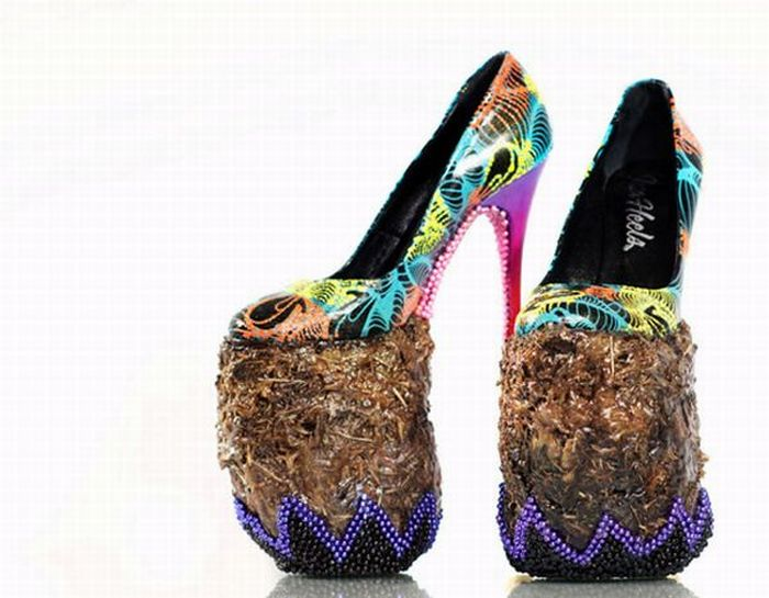 Elephant Dung Shoes (9 pics)