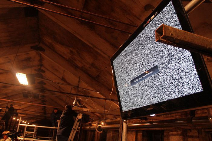 TV for Cows (22 pics)