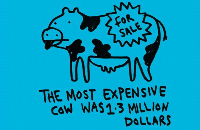 Interesting Facts. Part 2 (80 pics)