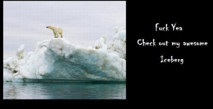 Global Warming Explained by a Polar Bear (4 pics)