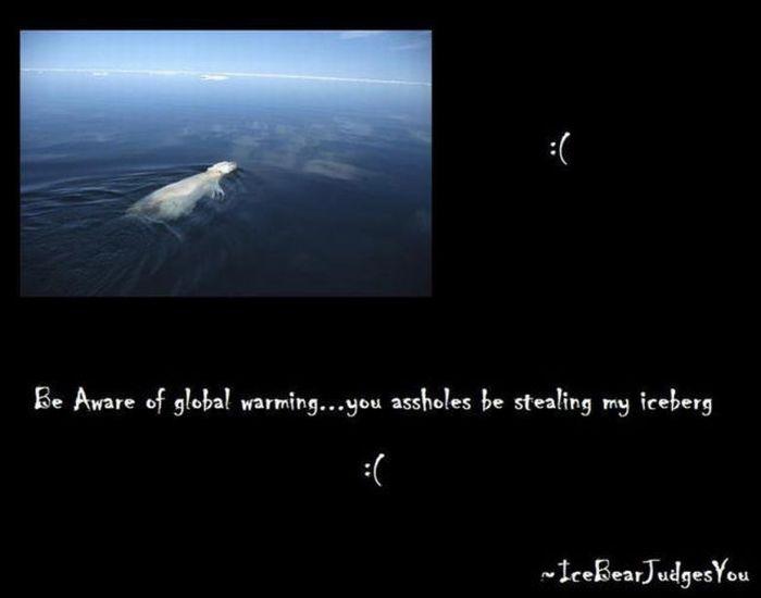 Global Warming Explained by a Polar Bear (4 pics)