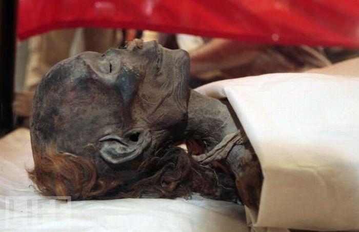 Amazing Mummies (23 pics)