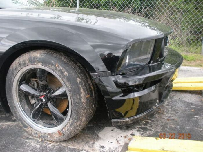 Dealer Accidentally Remote Starts Mustang Right Into a Pond (9 pics)