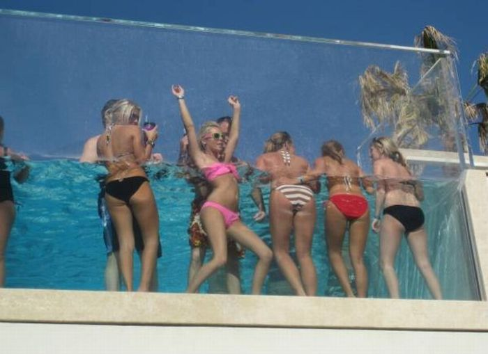 Pool Party (12 pics)