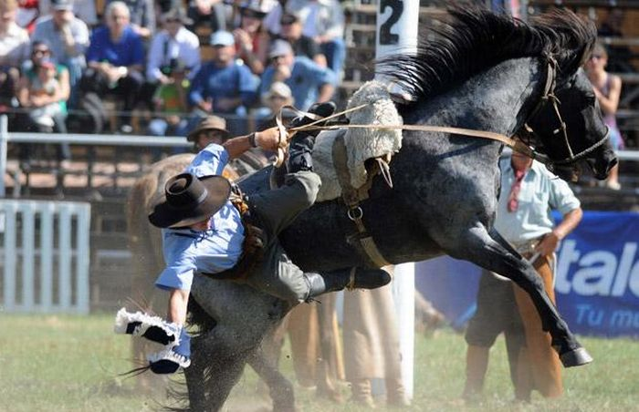 Gaucho Rodeo Riders (16 pics)