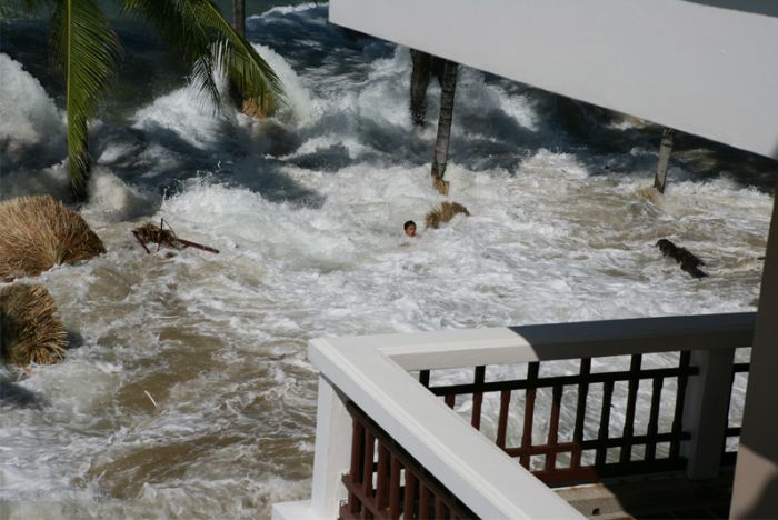 Tsunami as Seen From a Hotel Room (7 pics)