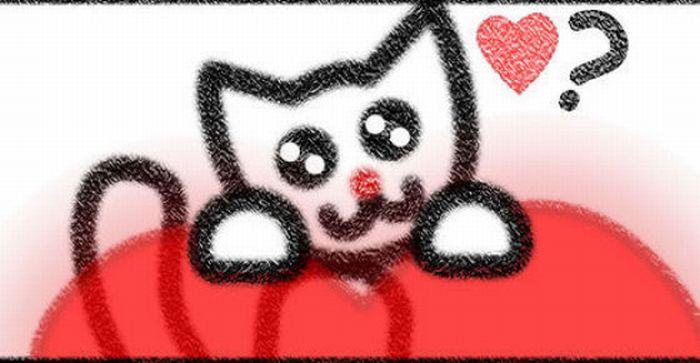 I Love Cats (10 pics)