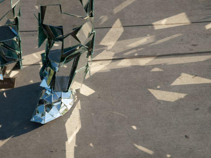 Mirror Man (15 pics)