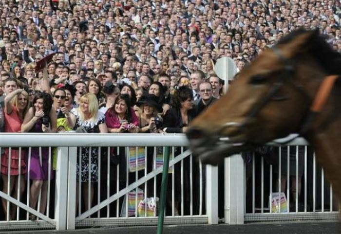 The Grand National Race in Liverpool (23 pics)