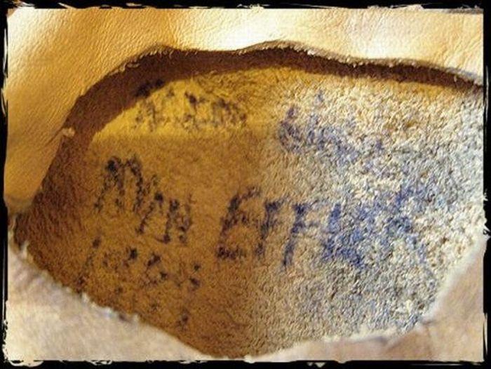 Freddy Krueger's Glove (18 pics)