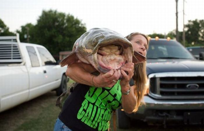 Okie Noodling Tournament (30 pics)