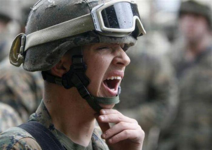 Yawning (41 pics)