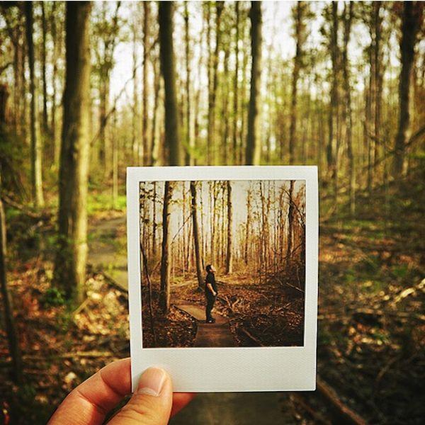 Fun with Polaroids (19 pics)