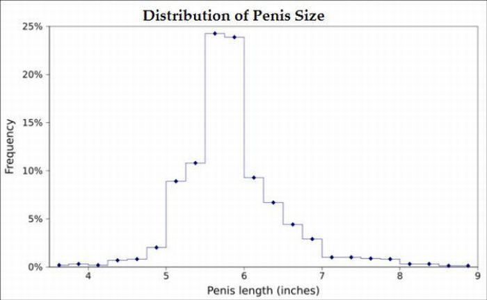 """Редактировать раздел  """"Размер полового члена новорождённых, подростков и при старении """"."""