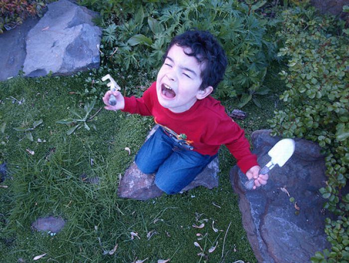 Screaming Cats and Kids (18 pics)