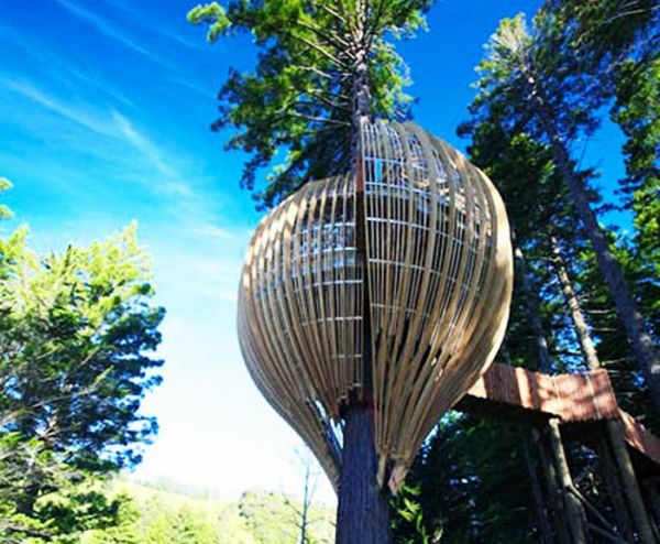 Incredible Crysalis Treehouse Restaurant (7 pics)