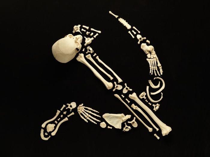 Art Made from Real Human Bones (12 pics)