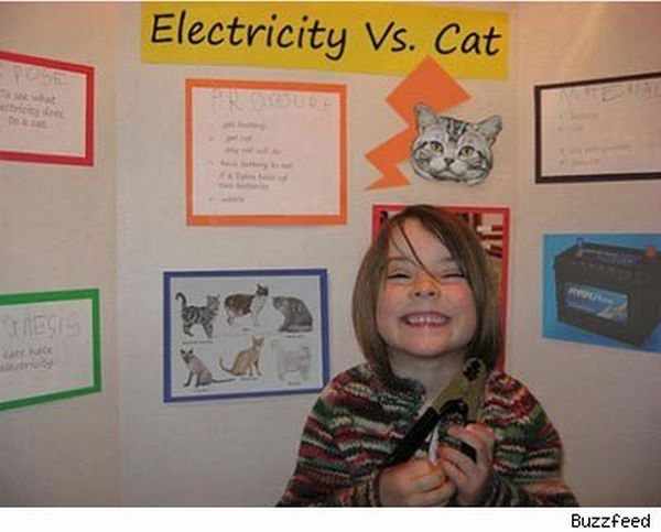 Hilarious Science Fair Projects (30 pics)