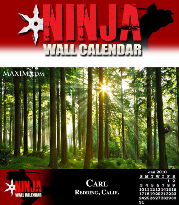 If Ninjas Made a Wall Calendar (12 pics)